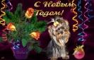 открытка от Александры Бирюковой